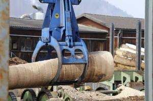 dużo drewna w tartaku
