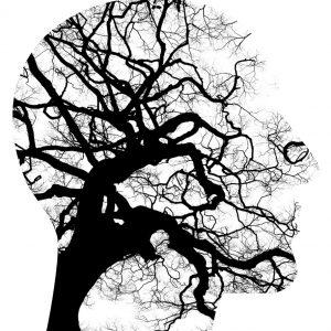 głowa drzewo