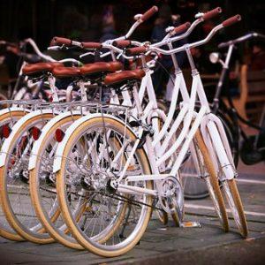 Producenci rowerów i jak wybrać najlepszego